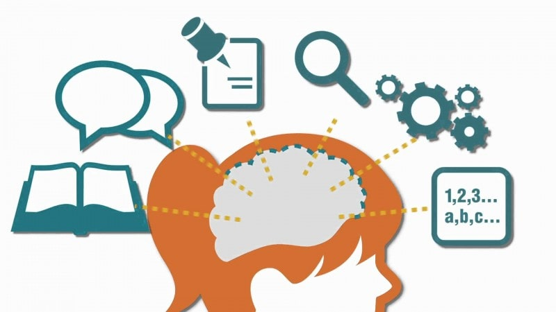 Brain Learning Process