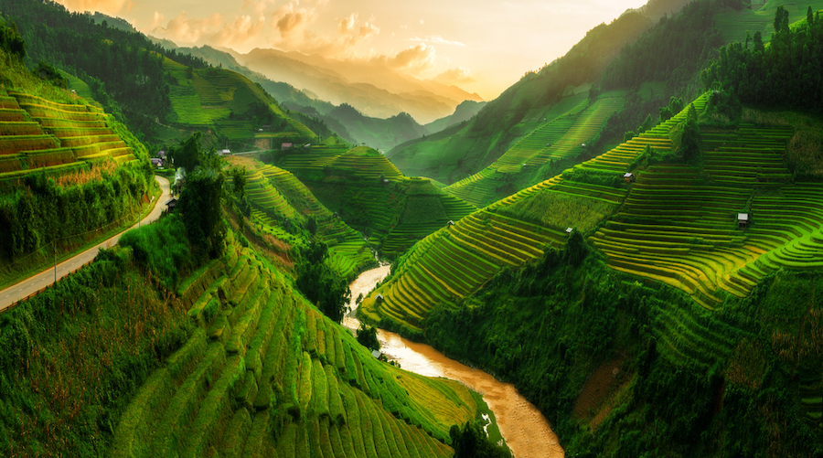 Vietnam for the Trailblazer
